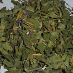 Кипрей (иван-чай) трава