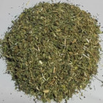 Мелисса (трава)