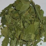 Смородина (лист)