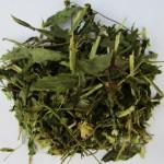 Череда (трава)